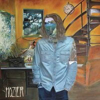 Hozier - Hozier - 2x Vinyl Records MUSIC ALBUM LIKE NEW RARE AU STOCK